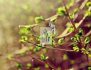 玉楼春(立春日)