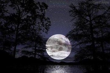 月夜怀寄友人